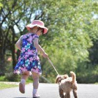 走る少女と犬