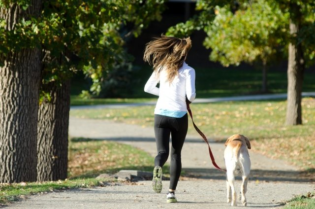 ランニングする女性と犬